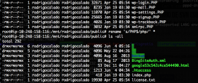 Saiba como renomear a extensão de múltiplos arquivos de uma determinada pasta para outra extensão (Linux)