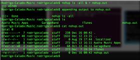 Executar um comando em terminal Linux / FreeBSD (*Unix) sem a necessidade de você permanecer conectado ao servidor (rodar comando em background)